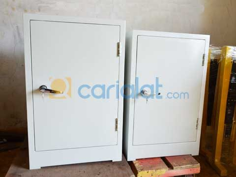 Insect Cabinet